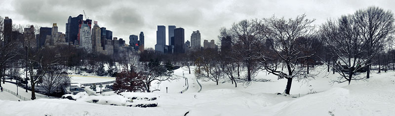 Central Park in white. Snow in New York.